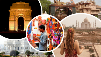 Photo of Golden Triangle Tour – Get a Taste about Northern Culture