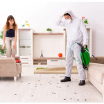 The impact of an effective pest control program to the family unit