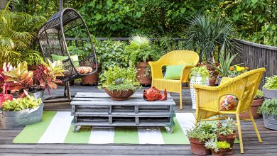 Photo of Top 10 Tips to Take Care of Your Home Garden