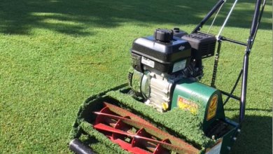 Photo of Benefits of using reel mower