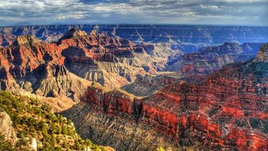 Photo of 5 Best Places To Visit In the USA In Summer 2020