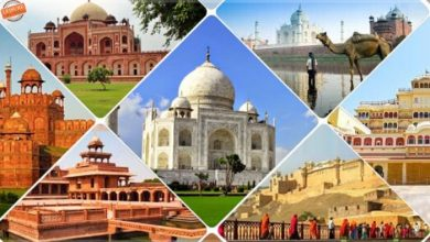 Photo of How many days? 2-10 days for Golden Triangle Tour india
