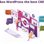 What makes WordPress the best CMS for SEO_