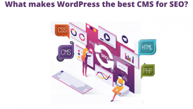 Photo of What makes WordPress the best CMS for SEO?