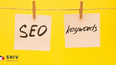 Photo of How Does SEO Help Your Business to Grow?