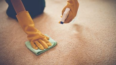 Photo of UPHOLSTERY CLEANING TIPS AND SERVICES