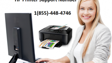 Photo of HP Printer Not Printing