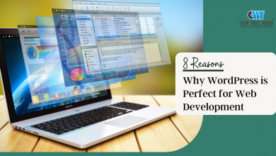 Photo of 8 Reasons Why WordPress is perfect for Web Development
