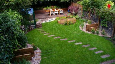 Photo of How Is Gardener Kidderminster Help Beneficial?