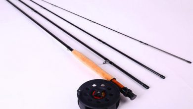 Photo of Some Basic Fly Fishing Gear for Beginners