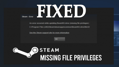 Photo of HOW TO FIX STEAM MISSING FILE PRIVILEGES ERROR?