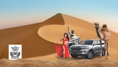 Photo of Enjoy Awesome Postcard Pictures of the Desert Safari in Dubai
