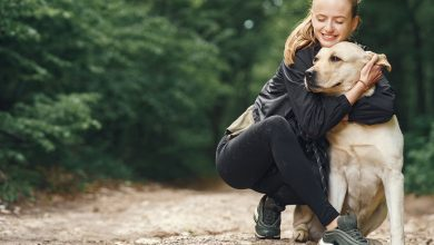 Photo of Love Starts With Pets And Protection