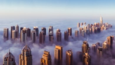 Photo of Benefits of setting up a business in Abu Dhabi free zone