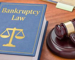 Photo of What is a Bankruptcy Fraud? & What are the two types of White Collar Crimes?