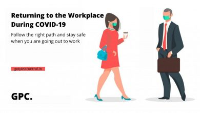 Photo of Tips to stay safe when returning to the workplace during COVID-19
