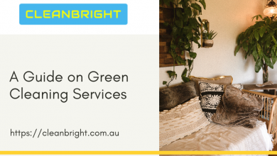 Photo of A Guide on Green Cleaning Services