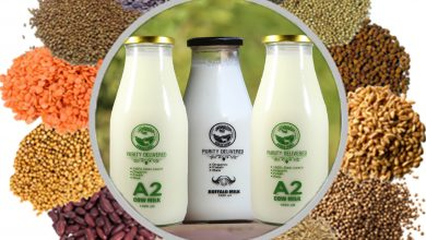 Photo of 4 benefits of A2 milk that can help you reduce your risk of heart disease