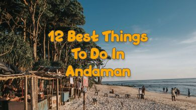 Photo of 12 Best Things To Do In Andaman