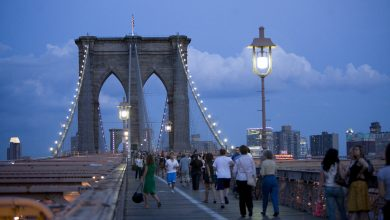 Photo of Top things to do in New York