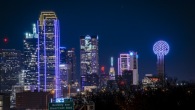Photo of 14 Best things to do in Dallas
